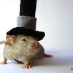 chapeau tim burton souris